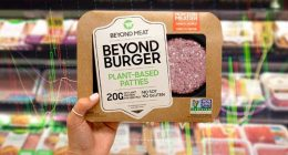 stocks to buy sell Beyond Meat (BYND stock)