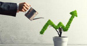 top growth stocks