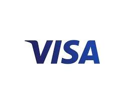 Visa Stock (V Stock)