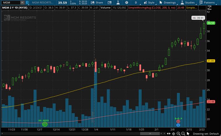 consumer discretionary stocks (MGM stock)