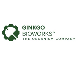 best synthetic biology stocks (SRNG stock)