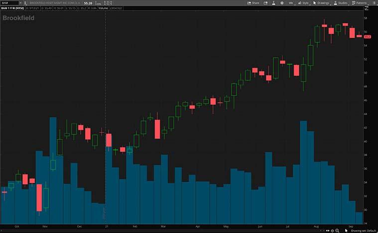 top dividend stocks (BAM Stock)